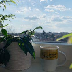 Iskoristi lockdown da popiješ kafu